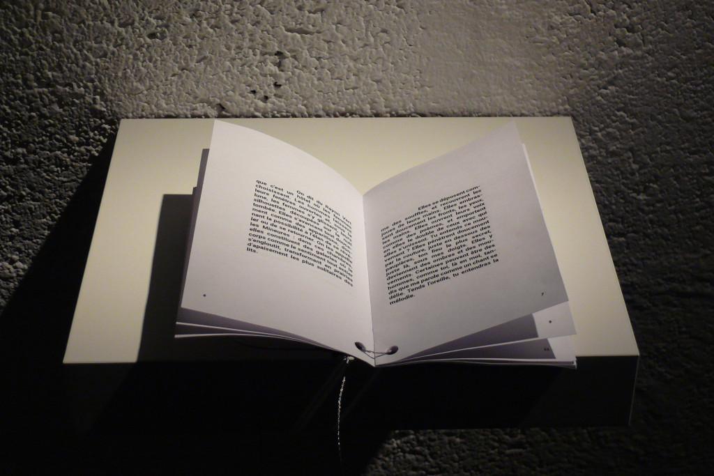 Collection Morel, Les machines celibataires – L'hotel du rayon vert, photo Marion Orel, 2016