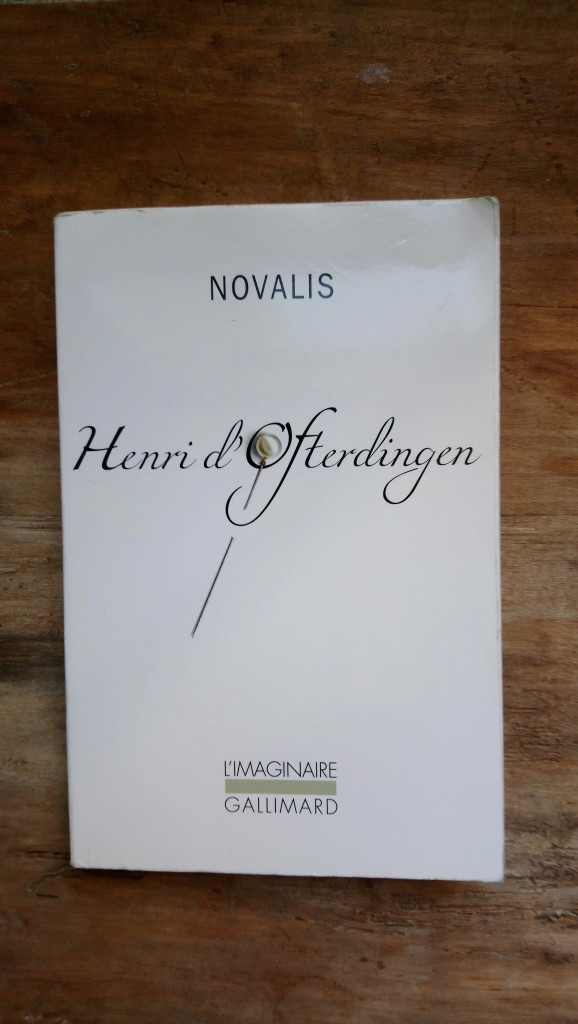 Lire Henri d'Ofterdingen de Novalis, Collection Morel, Musiques imaginaires, 2017 , photo de Wilfried Paris 1